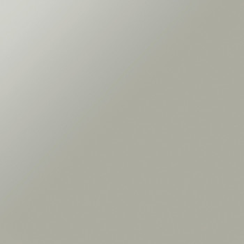 Poliform_finiture_vetro_acidato_5380_ACCIAIO 350x350